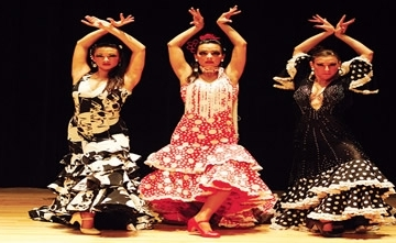 Flamenco Show At Disposal